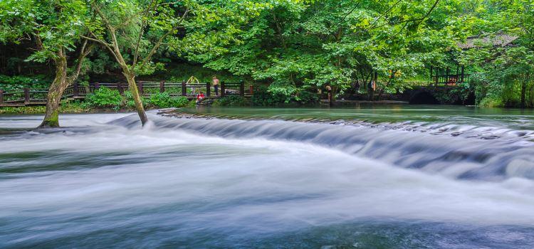 小車河城市濕地公園1