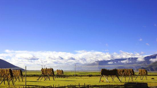 Yila Prairie