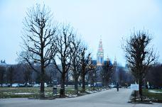 维也纳市政厅-维也纳-尊敬的会员