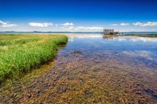 若尔盖花湖生态旅游区-若尔盖-尊敬的会员
