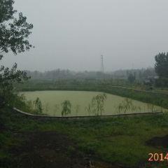 pan long shan User Photo