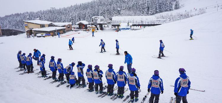 比羅夫滑雪場3