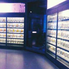 慶元縣香菇博物館用戶圖片