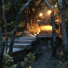 普陀山西天景區用戶圖片