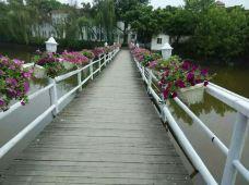 玉龙湖风景区-泸县-189****0807