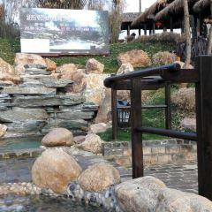 崇陽浪口森林溫泉用戶圖片