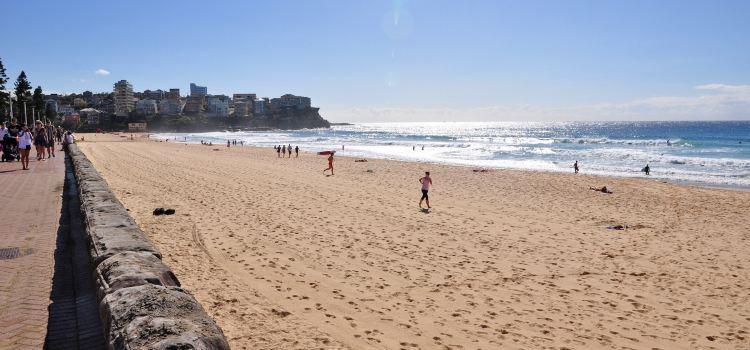 曼利海灘3