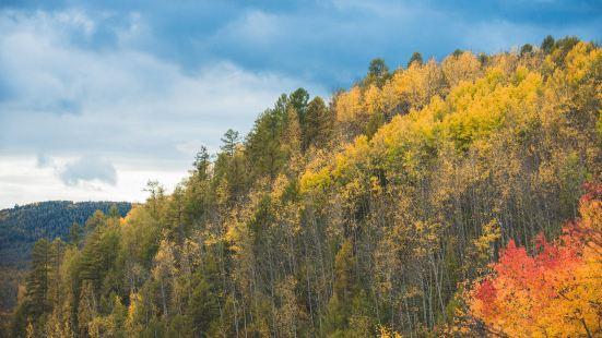 滿歸伊克薩瑪國家森林公園