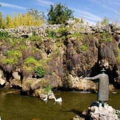博雷利公園用戶圖片