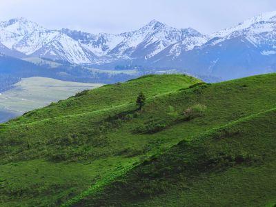 喀拉峻草原