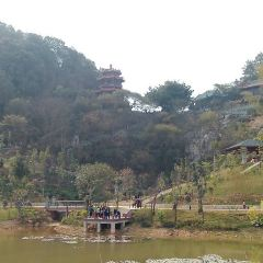 Guangdong Shenguangshan Forest Park User Photo