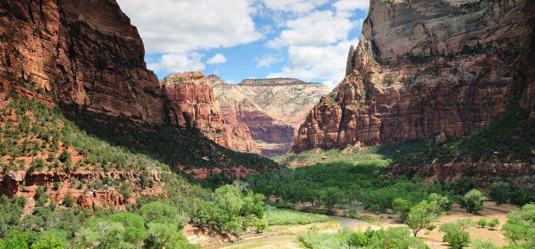 Zion National Park1
