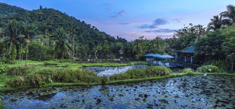 Yanoda Rainforest Cultural Tourism Zone3