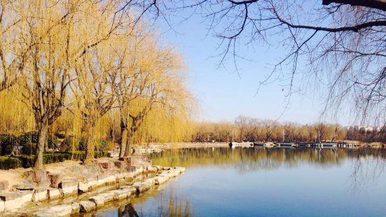 청양 세기 공원