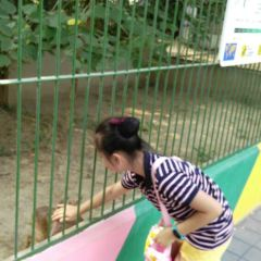 Beijing Zoo User Photo