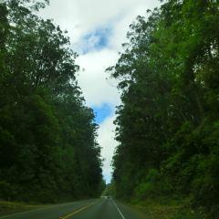 Waipio Valley User Photo