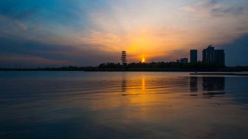曁陽湖エコパーク
