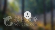 东吴国家森林公园