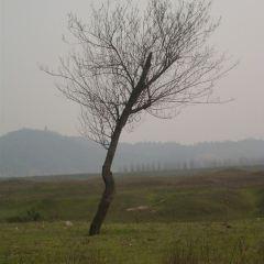 Moon Island User Photo