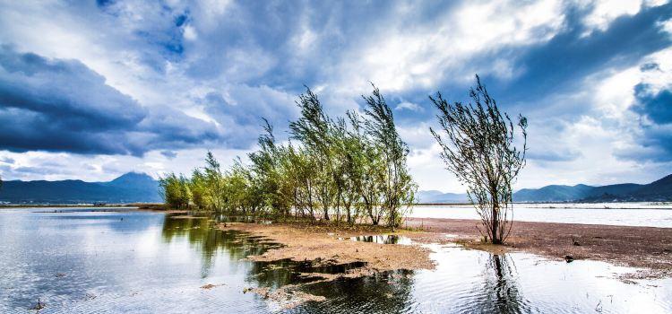 Lashi Lake1