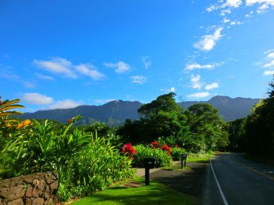 Maunawili Trail