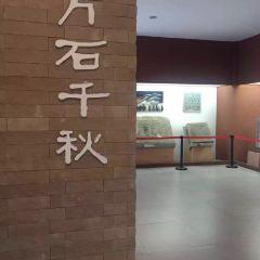 滕州漢畫像石館用戶圖片