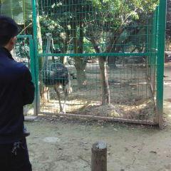 Xishuangbanna Tropical Zoo User Photo