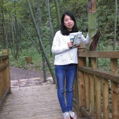 太子山國家森林公園用戶圖片