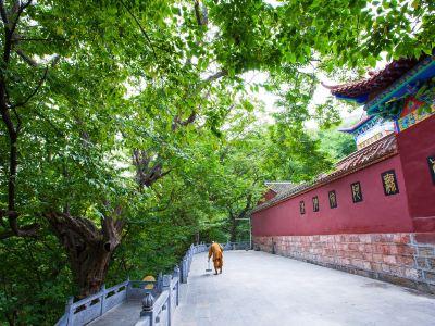 皇藏峪國家森林公園