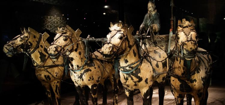 Bronze Chariot and Horse of Qinling1