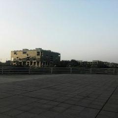 Guangdong University of Techonology User Photo