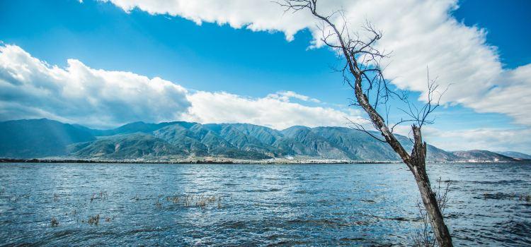 海舌生態公園3