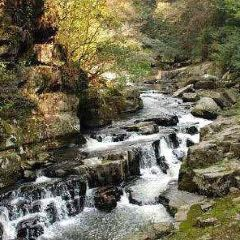 Shilongshan National Forest Park User Photo