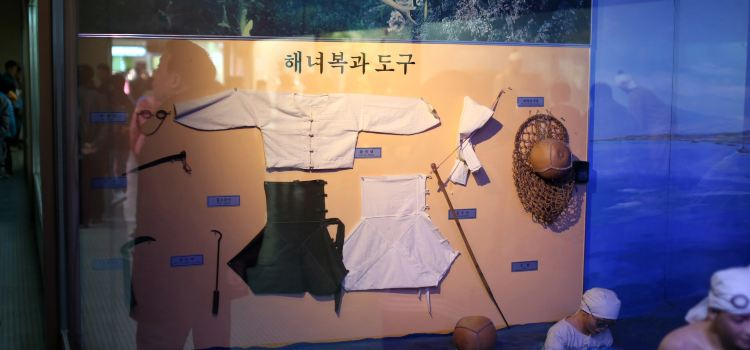 Jeju Folklore & Natural Museum3