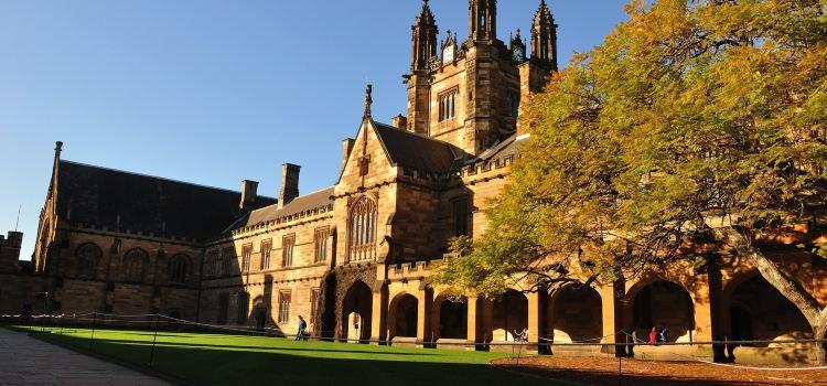悉尼大學1