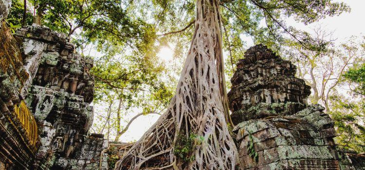 Angkor Wat Complex3