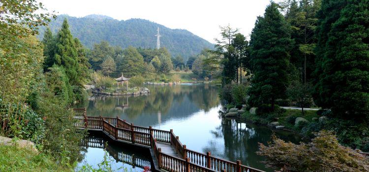 쓰밍산 국립삼림공원1