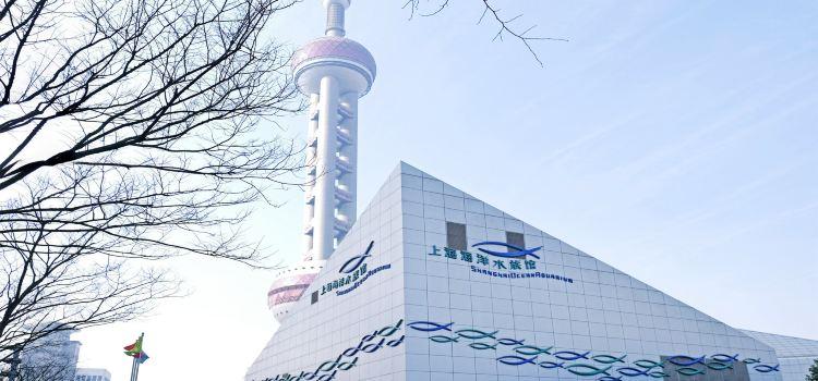 上海海洋水族館1