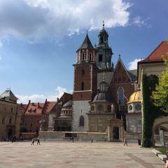 Lost Wawel User Photo