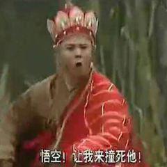 蒼霞公園用戶圖片