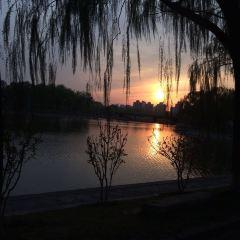 Hong Ling Jin Park User Photo