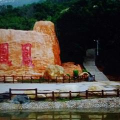 Phoenix Hill (Fenghuang Shan) User Photo