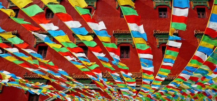Putuo Zongcheng Temple3