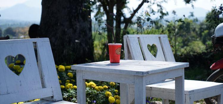 Coffee in Love2