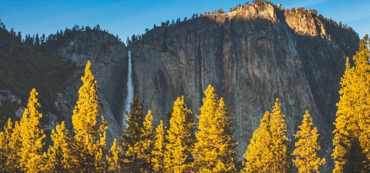 Yosemite National Park1