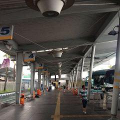 Little Hong Kong User Photo