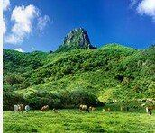 Kenting Dajianshan User Photo
