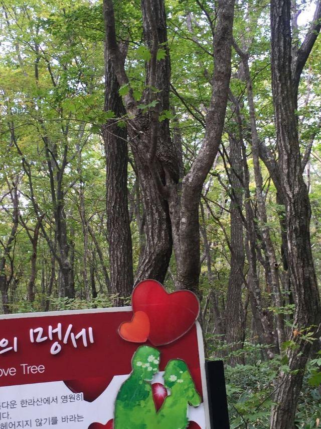 한라산 국립공원