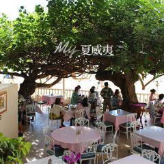Hau Tree Lanai用戶圖片