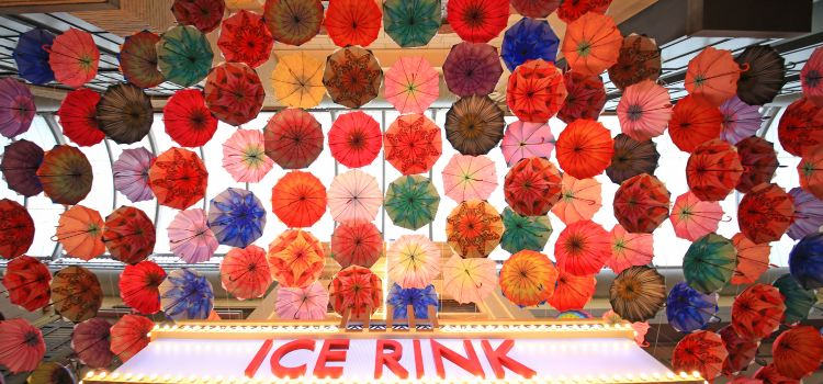 Dubai Ice Rink1